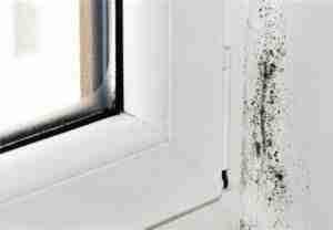 La posa corretta delle tue finestre